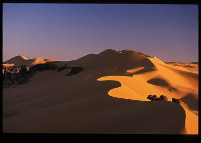 20-16-dune