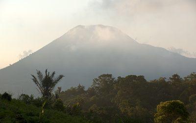INDONESIE / Sulawesi