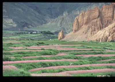 Dhakmar paysage-277