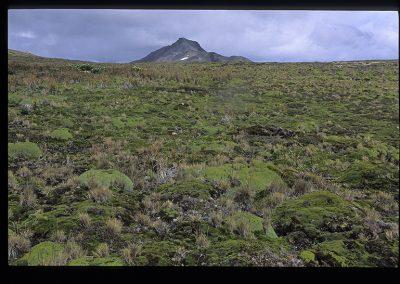 02-24-Ushuaia