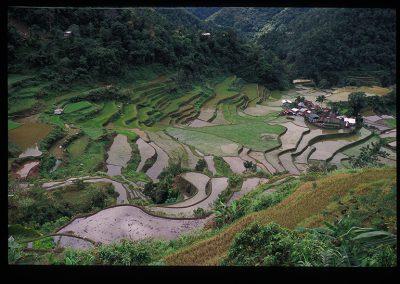 11-28-bangaan riziere