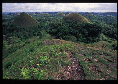 31-37-bohol hill