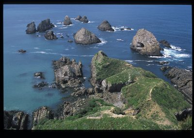 470-nugget point