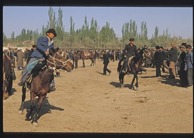 Kasghar chevaux-173