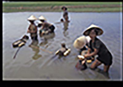 b78-Hue riviere peche