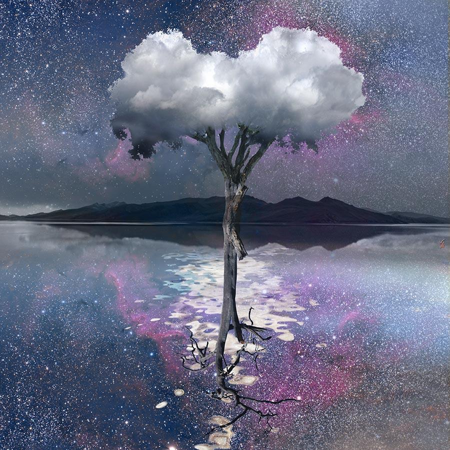 Arbre-nuage-miroir-mauve-01-copie